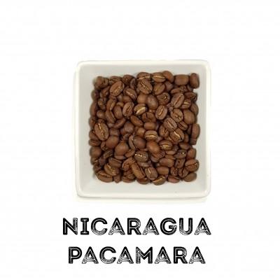 Café Nicaragua Pacamara